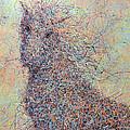 Wild Horse by James W Johnson