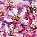 Wild Rose by Zaira Dzhaubaeva