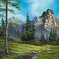 Wilderness Trail by C Steele