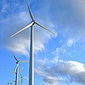 Wind Turbine Farm by Olivier Le Queinec