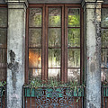 Window In The Quarter by Brenda Bryant