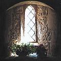 Window Solitude by Darren Baker