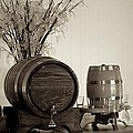Wine Barrels by Alanna DPhoto