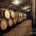 Wine Barrels In A Cellar. Cote D'or. Burgundy. France. Europe by Bernard Jaubert