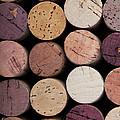 Wine Corks 1 by Jane Rix