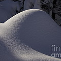 Winter Abstract by Sean Griffin