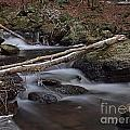Winter At Buttermilk Falls by Frank Piercy