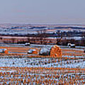 Winter Bales by Scott Bean