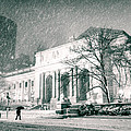 Winter Night In New York City - Snow Falls Onto 5th Avenue by Vivienne Gucwa