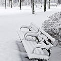 Winter Park With Benches by Elena Elisseeva