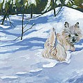 Winter Romp by Molly Poole