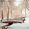 Winter's Bridge by Marty Koch