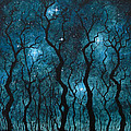 Winter's Night Print by Sabrina Zbasnik