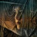 Woman in a Veiled Ha...