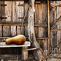 Wooden Shack by Carlos Caetano