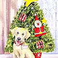 Woof Merry Christmas by Irina Sztukowski