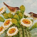 Wrens On Top Of Tucson by Summer Celeste