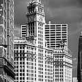 Wrigley Building Chicago Illinois by Christine Till