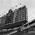 Wrigley Scoreboard Sans Color by David Bearden