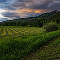 Wyoming Pastures by Chad Dutson