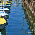 Yellow And Blue Sailboats From The Book My Ocean by Artist and Photographer Laura Wrede