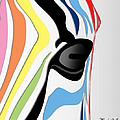 Zebra 1 by Mark Ashkenazi