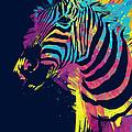 Zebra Splatters Print by Olga Shvartsur