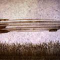 Zeppelin  Print by Bob Orsillo