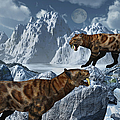 A Pair Of Sabre-toothed Tigers by Mark Stevenson