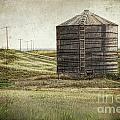Abandoned Wood Grain Storage Bin In Saskatchewan by Sandra Cunningham