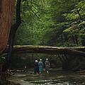 Amish Creek Hike