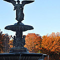 Angel Central Park