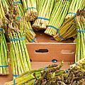 Asparagus by Tom Gowanlock