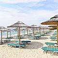 Beach Umbrellas On Sandy Seashore by Elena Elisseeva
