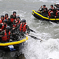 Buds Participate In Rock Portage by Stocktrek Images