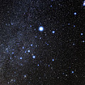 Canis Major Constellation by Eckhard Slawik