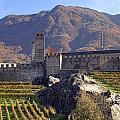 Castelgrande - Bellinzona by Joana Kruse