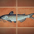 Catfish by Andrew Drozdowicz