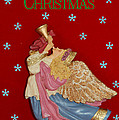 Christmas Angel by Aimee L Maher Photography and Art Visit ALMGallerydotcom