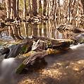 Cibolo Creek by Paul Huchton