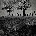 Dark Roost by Ron Jones