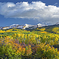 East Beckwith Mountain Flanked By Fall by Tim Fitzharris