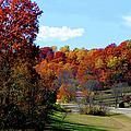 Fall Drive in Tennessee Print by EricaMaxine  Price