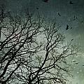 Flock Of Birds Flying Over Bare Wintery Trees by Sandra Cunningham