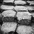 Giants Causeway Stones Northern Ireland by Joe Fox