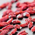 Goji Berries by Elena Elisseeva