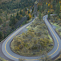 Historic Columbia River Highway by Alan Majchrowicz