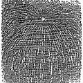 Meteor Shower, 1833 by Granger