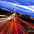 Night Traffic by Elena Elisseeva