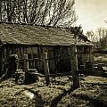 Old Fashioned Shed by Dawn OConnor